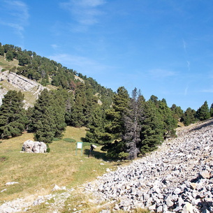 Col des Bachassons